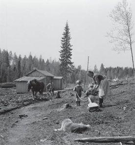 555px-Siirtoväki_raivaa_kylmää_tilaa