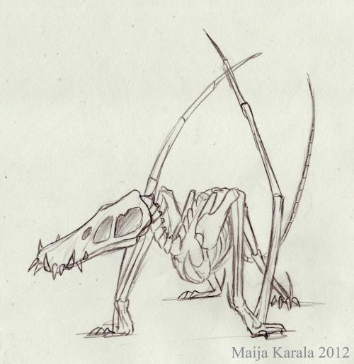 dorygnathus luut