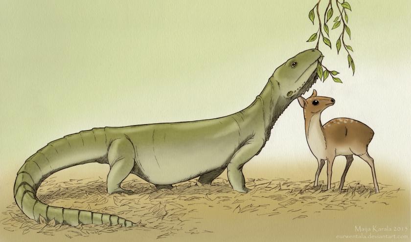 barbaturex morrisoni iguanian acrodon maija karala