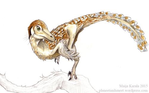 velociraptor mongoliensis raptori maija karala