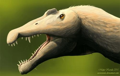 spinosaurus_höyhenet_pieni_maija_karala