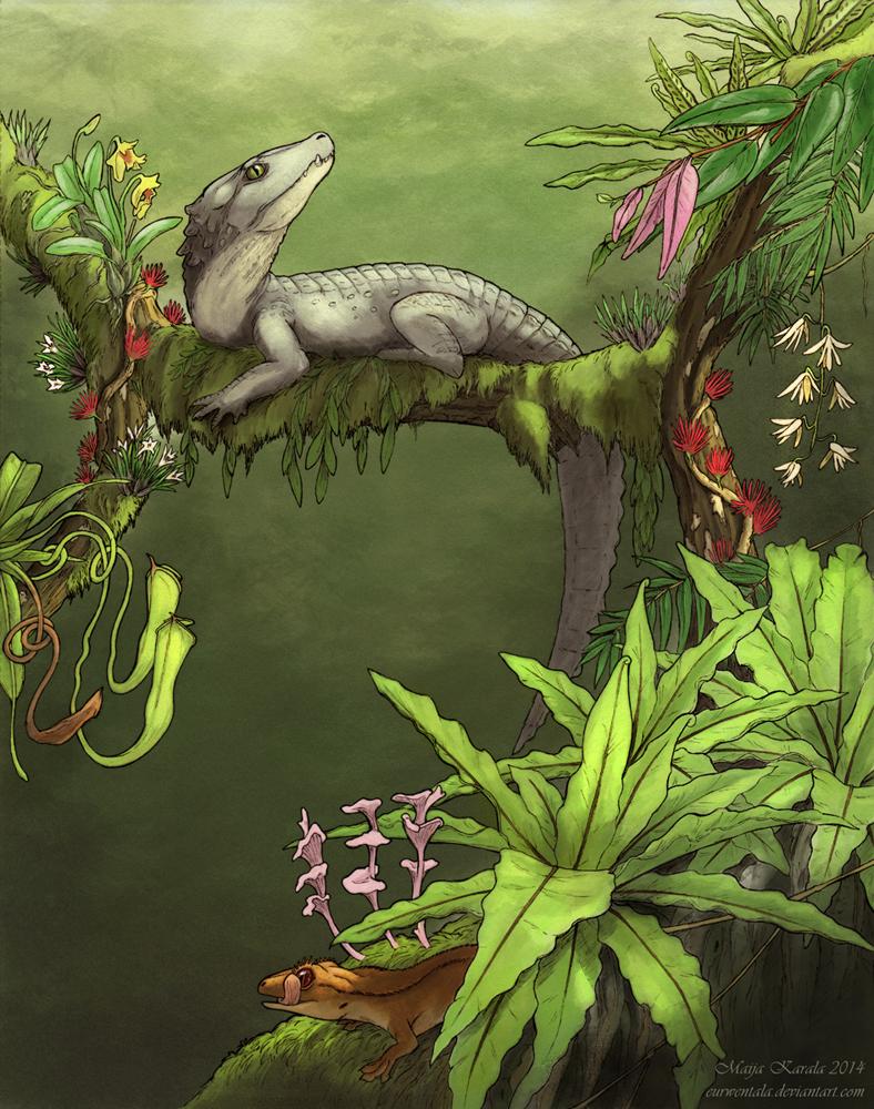 mekosuchus_inexpectus_pieni_maija_karala_uusi_kaledonia_krokotiili