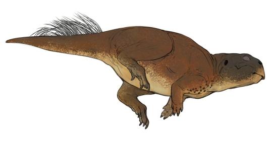 psittacosaurus_sinkkonen