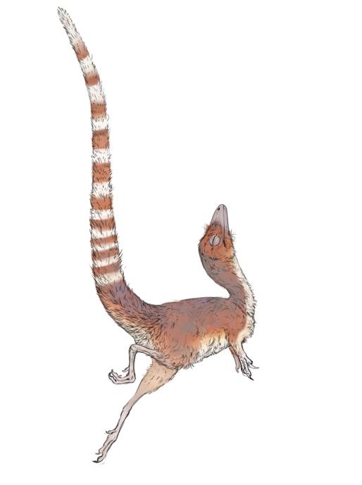 sinosauropteryx_sinkkonen