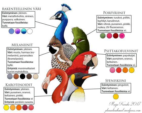 pigmentit_suomennos_rajattu