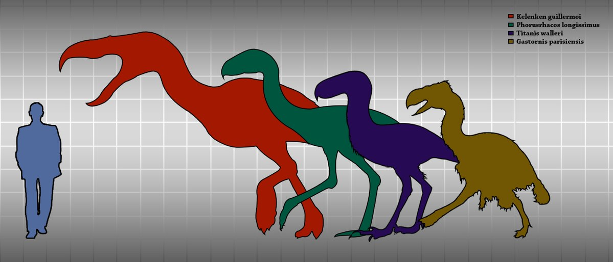 1200px-Terror_birds_and_Gastornis_height_comparison